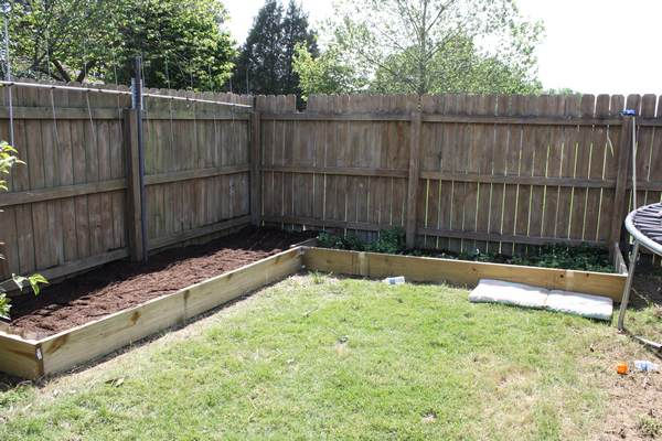 Vegetable Garden – Phase Two